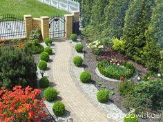 Po prostu ogród... - strona 226 - Forum ogrodnicze - Ogrodowisko