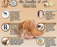 Health benefits of garlic. here-s-to-your-health-tips-tricks Blood Pressure Chart, Blood Pressure Remedies, Health And Nutrition, Health And Wellness, Health Facts, Wellness Tips, Health Chart, Health Quotes, Nutrition Tips