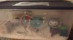 Diy bin cage 106 qt bin makes a perfect 434 sq inch cage I used in wire mesh perfect size supplies can be found at target and Home Depot; Hamsters, Rodents, Hamster Bin Cage, Russian Hamster, Healthy Skin Care, Wire Mesh, Home Depot, Cute Pictures, Target