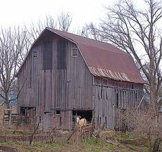 Kansas Barn