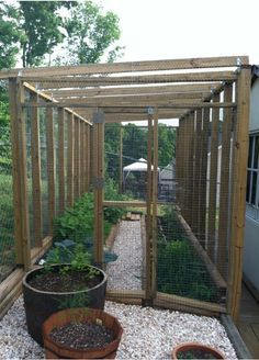 Amazing Ideas for Growing a Successful Vegetable Garden - Decomagz Small Vegetable Gardens, Vegetable Garden Planning, Vegetable Garden For Beginners, Vegetable Garden Design, Small Gardens, Outdoor Gardens, Vegetable Gardening, Container Gardening, Magic Garden
