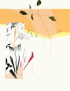 Alicia Galer's Botanical Creations