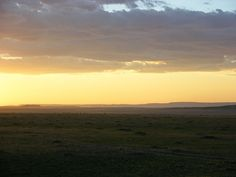 SONNENAUFGÄNGE MIT 100.000 GNUS http://www.reiseknipse.de/2013/06/MigrationMasaiMara.html #africa #travel #kenya #sunset #wildlife