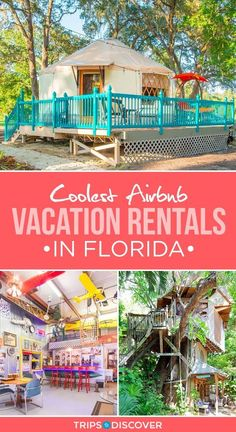 travel destinations florida 10 of the Coolest Airbnb Vacation Rentals in Florida Florida Usa, Places In Florida, Visit Florida, Florida Travel, Florida Beaches, Travel Usa, Florida Rentals, Sarasota Florida, Florida Vacation Spots