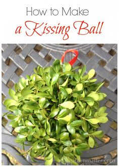An easy way to use fresh greenery to decorated for Christmas! Hang in the foyer or any doorway.