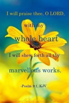 I will praise thee, O Lord, with my whole heart... ...  ~Psalm 9:1 KJV