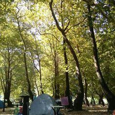 Camping, Xoreuto Greece