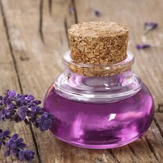 Tea Tree Oil For Rosacea - Tea Tree And Lavender Essential Oils Making Essential Oils, Essential Oils For Skin, Wild About Beauty, Lavender Benefits, Oil Benefits, Health Benefits, Infused Oils, Lavender Oil, Lavender Plants