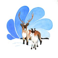 Reindeer Holiday Card. $5.00 Canadian Animal Families, a watercolour series by Marisa Pahl.