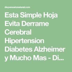 Esta Simple Hoja Evita Derrame Cerebral Hipertension Diabetes Alzheimer y Mucho Mas - Dispensario Natural