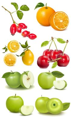 Fruit processing machine contains fruit grading machine, fruit peeling machine, fruit slicing machine, fruit crushing machine, etc. We offer you whatever fruit processing machine you want at an unbeatable price. Image Fruit, Vegetable Pictures, Food Clipart, Garden Labels, Foto Transfer, Fruit Picture, Fruit Illustration, Variety Of Fruits, Fruit Art
