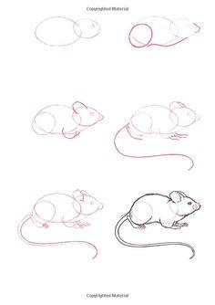 (2011-11) ... a mouse