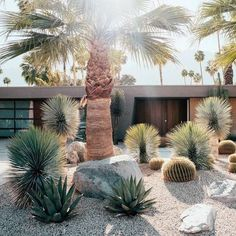 60 Cheap Landscaping Ideas for Front Yard Youll Fall in Love With 60 günstige Landschaftsbau-Ideen f Cheap Landscaping Ideas For Front Yard, Modern Landscaping, Outdoor Landscaping, Modern Landscape Design, Modern Garden Design, Landscape Architecture, Minimalist Landscape, City Landscape, Succulent Landscaping