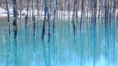 Japan, Biei, Hokkaido. 夏の彩へと  Blue Pond & first snow. Why is the pond blue? Because the underground hot spring ingredient is gushing. This blue pond changes color every day. Photography - トムとジェリー