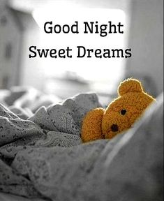 Good Night Images For WhatsApp - Cute Good Night Images Good Night Greetings, Good Night Messages, Good Night Wishes, Morning Greetings Quotes, Good Night Moon, Good Morning Good Night, Good Night I Love You, Good Night Image, Sweet Night