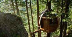 Hemloft: la casa sull'albero a forma di uovo