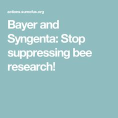 Bayer and Syngenta: Stop suppressing bee research!