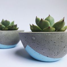 Then you've got your planters! DIY drip planters are a rather great idea if you're a free spirit who loves color.