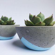 DIY handmade concrete planters