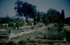 Old photo of Sylvan Cemetery I think things are probably looking better today. Citrus Heights, Local History, Sacramento, Cemetery, Old Photos, Painting, Vintage, Old Pictures, Antique Photos