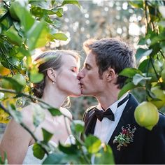 Love and kisses and lemon trees!