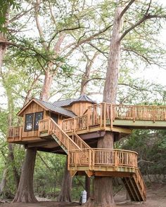 🎁 Need Shed plans OR amazing woodworking plans! Check Link in bio 🔥 . Building A Treehouse, Backyard Hammock, Cool Tree Houses, Tree House Designs, Cabin In The Woods, Tiny House Cabin, Amazing Buildings, Texas Hill Country, Wood Plans