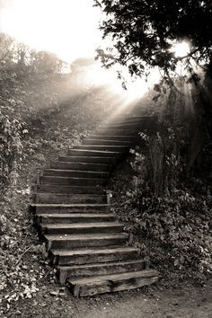 Stairway to heaven stock image. Image of path, eden, monochrome - 13495175 Heaven Tattoos, Akiane Kramarik, Universe Tattoo, Religious Pictures, Photo Black, Black And White Pictures, Pathways, Stairways, Black And White Photography