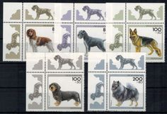 Bund 1797-1801 Bogenecke Hunde Eckrand oben links tadellos postfrisch