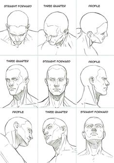 Human Head Sheet by Hoelho on DeviantArt - -You can find Deviantart and more on our website.Human Head Sheet by Hoelho on DeviantArt - - Human Figure Drawing, Figure Drawing Reference, Art Reference Poses, Anatomy Reference, Human Face Drawing, Human Anatomy Drawing, Human Face Sketch, Human Figure Sketches, Face Reference