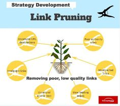 Link Pruning Infographic
