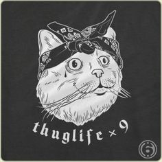 That's one tough feline!!!! #cats #catsofpinterest #6dollarshirts
