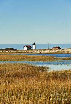 ✮ Race Point Lighthouse - Provincetown, Cape Cod, Massachusetts