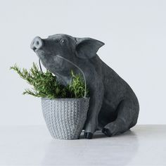 Designed from 100 percent stone resin, the Studios Resin Pig with Basket is a friendly and functional piece of farmhouse décor. This Little Piggy, Little Pigs, Decorative Objects, Decorative Pillows, Pig Kitchen, Kitchen Ideas, Elephant Home Decor, Cat Sleeping, Small Plants