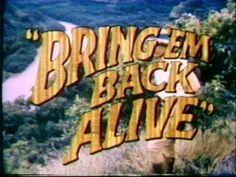 BRING 'EM BACK ALIVE (1982) TV Series-STARING BRUCE BOXLEITNER---I LOVED THIS SHOW!