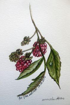 gemalt in Aquarell www.marenschmidt.de