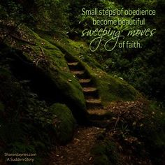 Small steps of Obedience become beautiful sweeping moves of faith. A Sudden Glory/SharonJaynes Funny Inspirational Quotes, Funny Quotes, Glory Quotes, S Word, Savior, Favorite Quotes, Haha, Encouragement, Spirituality
