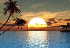 www.amazon.com dp B00WX18ZHE ref=cm_sw_r_pi_dp_T8L1wb0WAFVMY
