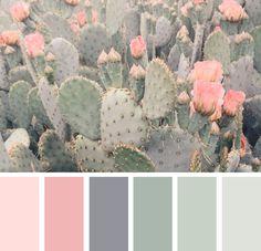 Color Pastel color palette from cacti.Pastel color palette from cacti. wandfarbe pastell Cacti Color Pastel color palette from cacti. Pastel Colour Palette, Colour Pallette, Pastel Colors, Color Combos, Color Schemes Colour Palettes, Color Palette Green, Bedroom Color Schemes, Apartment Color Schemes, Paint Schemes