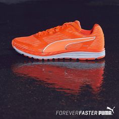 3d8c4034a Speed 500 IGNITE NightCat Men's Running Shoes | PUMA Last chance in your  size | PUMA United States