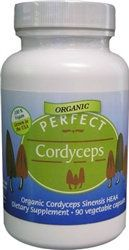 Perfect Cordyceps Sinensis- All natural Energy Booster, Increase Energy , Endurance, Stamina & Oxygen capacity. Made with Organic Coryceps made in the USA Paleo What Is, Health Diet, Health And Wellness, Herbs List, Mushroom Fungi, Medicinal Herbs, Outlet, Health Advice, How To Increase Energy
