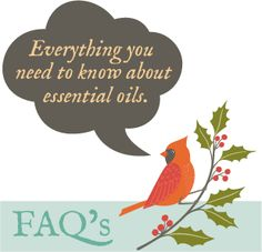 How to use your favorite oils.