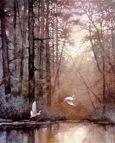 Landscape series 1 -  Morning Delight - Watercolor, Egrets, Landscape, Sunlight, Waterfowl, Forest, Wildlife
