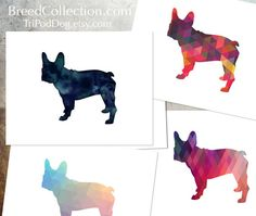 French Bulldog - Dog from the TriPodDog Breed Collection - Note Card Collection Black Watercolor Silhouette and 3 Colorful Geometric Pattern