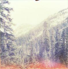 Vista, Snow Lake Trail, North Bend, WA by Peter Lombardi via Flickr