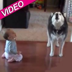 Baby And Dog 'Talk' To Each Other In Hilarious Video | Radar Online