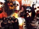Hate that Dimebag darrell died Dimebag Darrell, 80 Bands, Rock Bands, Music Wallpaper, Dark Wallpaper, Vulgar Display Of Power, Bass, Vinnie Paul, Cowboys From Hell