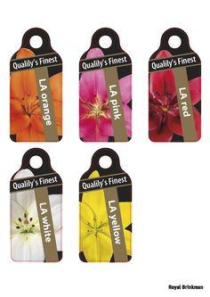 labels, royal brinkman www.royalbrinkman.com Label Tag, Design Concepts, Packaging Design, Orange, Tags, Studio, Pink, Rose, Hot Pink