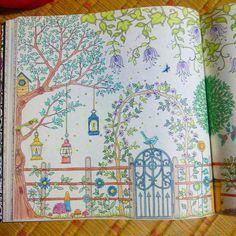 #repost#coloriage#coloringbooks#secretgarden#johannabasford#ひみつの花園 #コロリアージュ#ジョハンナバスフォード#大人のぬりえ