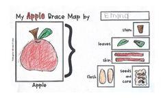 Brace Maps Through the Year SAMPLE by Kindergarten with Susie | Teachers Pay Teachers