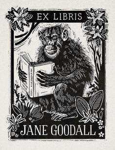 Ex Libris, Define Art, Woodcut Art, Book Logo, Dark Tattoo, Book Cover Art, Book Images, Primates, Illustrations And Posters